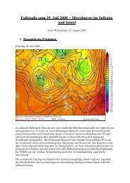Fallstudie zum 29. Juli 2008 – Microbursts im Sellrain ... - Wetteran