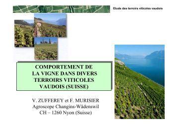 comportement de la vigne dans divers terroirs viticoles vaudois