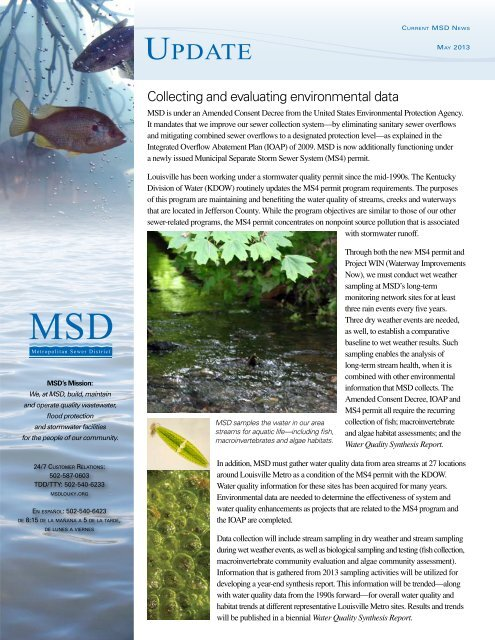 Update Newsletter – May 2013 - MSD