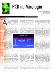 PCR na Micologia - Biotecnologia