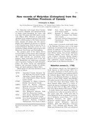 New records of Melyridae (Coleoptera) - Chebucto Community Net