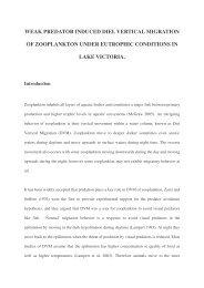 weak predator induced diel vertical migration of zooplankton under ...
