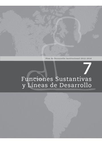 7 Funciones Sustantivas y Líneas de Desarrollo - Universidad ...