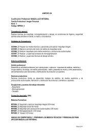 Anexo 24 Cualificacion Profes. Maq. Integral - Video cinco