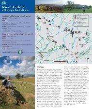 Moel Arthur – Penycloddiau 23 - Denbighshire Countryside Service