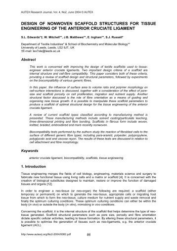 research paper scaffold example