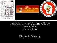 Tumors of the Canine Globe