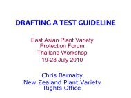 Drafting A Test Guidline (PDF/1.06MB) - The East Asia Plant Variety ...