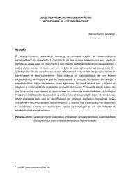 Questões Técnicas na Elaboração de Indicadores de Sustentabilidade