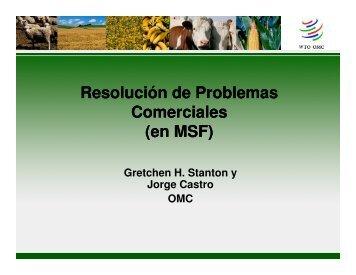 Gretchen Stanton y Jorge Castro. Regionalización y Equivalencia ...