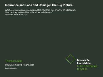 The Big Picture - Munich Climate-Insurance Initiative