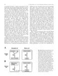 Cytosolic localization in tomato mesophyll cells of a novel glutamine ... - Page 7