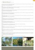 johannesburg - TDM Product - Page 2