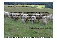 Ekonomiczne i organizacyjne problemy chowu owiec na obszarach