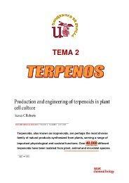 síntesis de los terpenos - BioScripts