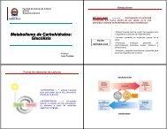 Metabolismo de Carbohidratos: Glucólisis