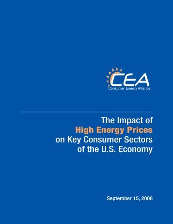 The Impact of High Energy Prices on Key Consumer Sectors of the ...