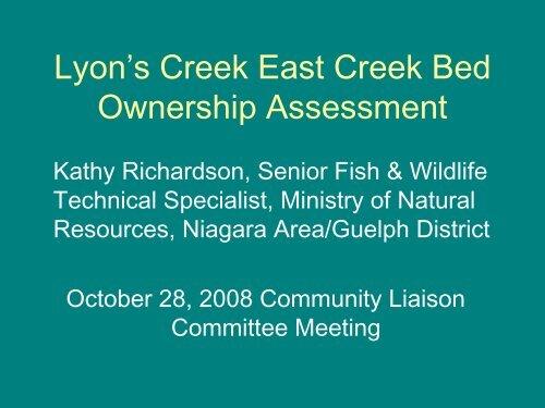 Lyons Creek East Creek Bed Ownership Assessment