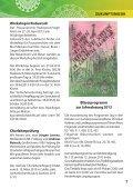 Rundbrief Nr. 3 - Dezember 2012 - Sächsische Posaunenmission eV - Page 7
