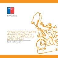 Caracterización de los canales de comercialización de la artesanía ...