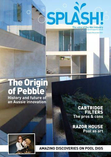 The Origin of Pebble - Splash Magazine