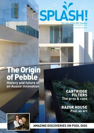 The Origin of Pebble - Splash Magazine