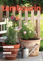 Culture : à vos agenda ! - Aramon