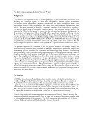 Culex Genome Project - Computational Evolutionary Genomics Group