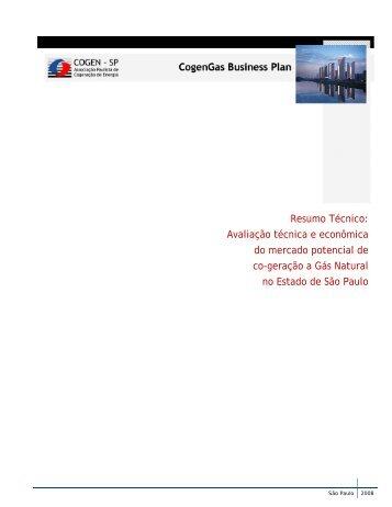 Resumo Técnico: Avaliação técnica e econômica do ... - Cogen