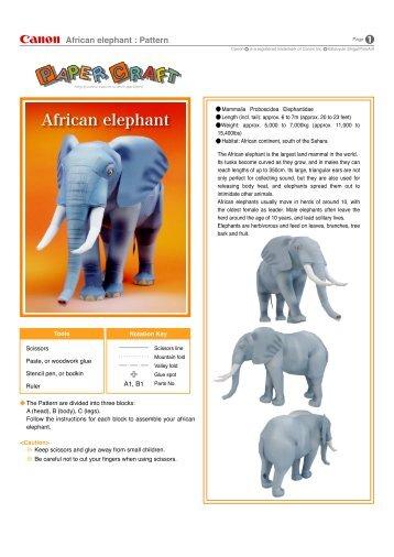 African elephant : Pattern - Yodibujo