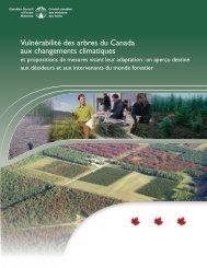 Vulnérabilité des arbres du Canada aux changements climatiques