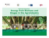iv. Optimizing the efficiency of biogas plants: Technology options