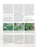 Pour lire la suite, TELECHARGEZ L'ARTICLE EN PDF - Jejardine.org - Page 5