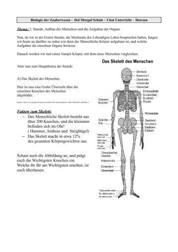 Groß Fakten über Das Skelettsystem Fotos - Anatomie Von Menschlichen ...