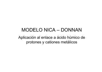 MODELO NICA – DONNAN