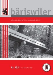 pdf | 2868 KB - Bäriswil