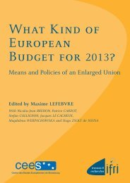What Kind of European Budget for 2013? - Infoeuropa