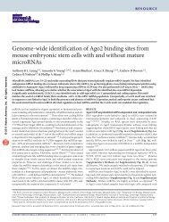 Genome-wide identification of Ago2 binding sites from mouse ...