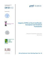 Impacts of HPAI on Rural Livelihoods: Conceptual and Analytical ...