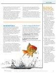 Nutzen Sie erfolgreiche absendernamen und Betreffzeilen - Silverpop - Page 4