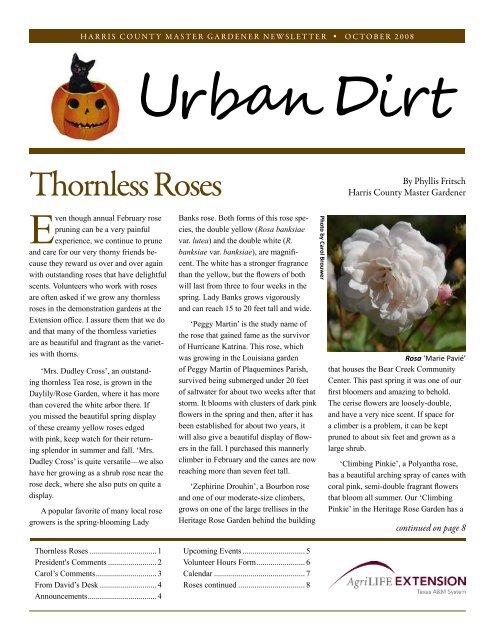 Thornless Roses Harris County Master Gardener