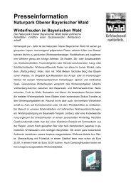 Eldorado für alpine Wintersportler am Hohenbogen