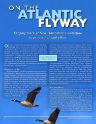 On the Atlantic Flyway - New Hampshire Fish and Game Department