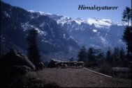 18. Himalayaturer - fritenkaren.se