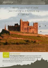 Castles and Heritage - Tipperary