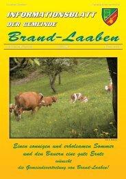 GEMEINDEZEITUNG - 33 - Juli 2006 (2,2 MB) (0 - Brand-Laaben