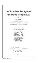 D. BOIS. Plantes potagères en pays tropicaux.