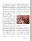 60 años de la ONU: ¿qué debe cambiar? - revista de comercio exterior - Page 6