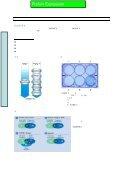PDF(822KB) - Page 4