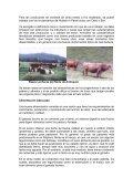 CÓMO OBTENER LECHE DE BUENA CALIDAD - Agronet - Page 4